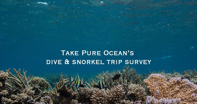 Samoa snorkel and diving trips